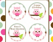 Owl Edible cookie toppers cupcake tops party decoration birthday baby shower tranfers brown green 1 dozen