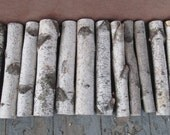 Decorative white birch logs fireplace logs Adirondack cabin decor Medium flat rate box
