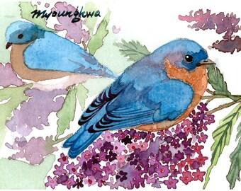 ACEO Limited Edition 2/25- Bluebird on Lilac, Spring bird, Bluebird art print of an original watercolor, Gift for bird lovers