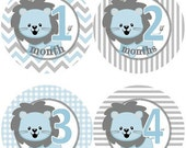 ON SALE Baby Monthly Milestone Growth Stickers Grey and Blue Lions Nursery Theme Baby Shower Gift MS568 Baby Photo Prop