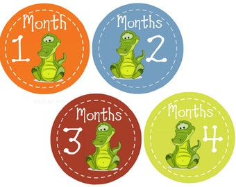 Boy Monthly Stickers Alligators Month Stickers Baby Milestone Stickers Baby Monthly Stickers Baby Shower Gift