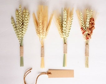 Fall Wheat Bundles SAMPLER SET of 4, Thanksgiving Name Cards, Dried Wheat, Wedding Place Cards, Fall Wedding Escort Cards, Mini Wheat Sheaf