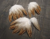 15 Small Rooster Wing Feathers ~ Cruelty Free **Use Coupon Code FEATHERS20 and save 20% on all Feathers**