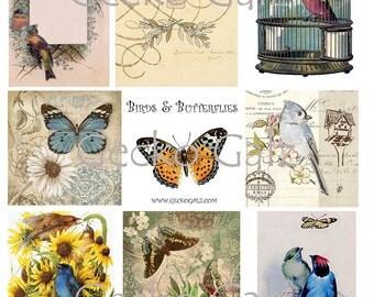 Butterflies and Birds Digital Collage Sheet