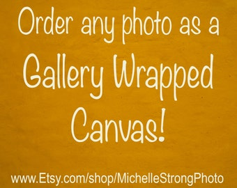 Gallery Wrapped Canvas, Large Canvas Wall Art, Canvas Photograph, Canvas Picture, Canvas Photography, Home Decor, Canvas Prints, Wall Art