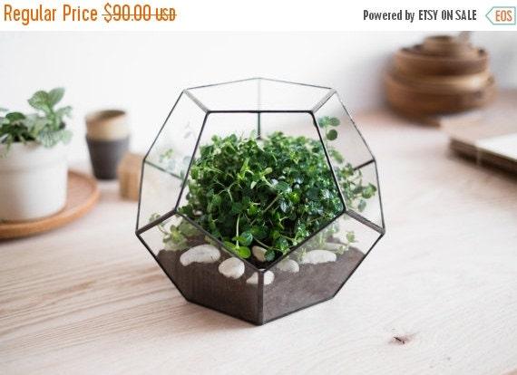 "ON SALE geometric glass terrarium ""dodecahedron"" - handmade glass terrarium - planter for indoor gardening"