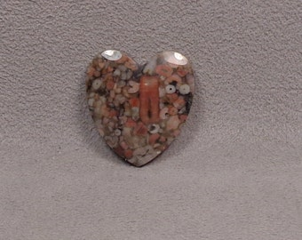 CRINOID FOSSIL Heart Shaped Cabochon