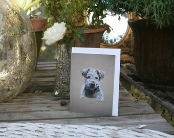 Truffle - Blank greetings cards of a terrier drawn by Imogen Man