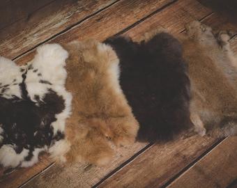 Fur rabbit Natural photography layer basket filler