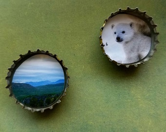 Bottle Cap Magnets - Norther Wilderness