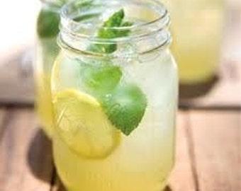 Natural Beeswax Lip Balm - Lemon Mint