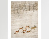 winter is coming .colorful nature illustrations with artist bri.b.gallery art prints for home  art decor.color your world