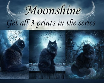 Gothic black cat set of wall art prints by Enchanted Whispers