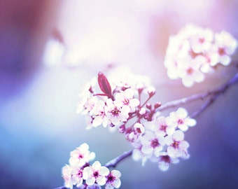 Flower Fine Art Photography Print, Dreamy Lavender Hue Tree Blossoms Bedroom Decor, Girl Tree Wall Art - A Dreamers Haze Print