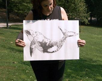 Print whale