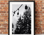 Patio Lights, Reflective, reflection, fir trees, string lights, twinkle lights, porch lights, rustic decor, lights // FRAME NOT INCLUDED