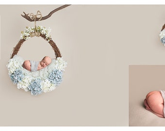 Digital prop/backdrop (Baby Blue Floral Hanging Vine Basket)