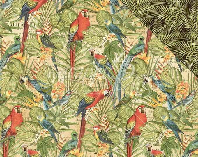 2 Sheets of SAFARI ADVENTURE Scrapbook Paper by Graphic 45 - Birds Of A Feather