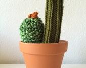 Knit Cactus!