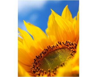 Sunflower Photography, Sunflower Art, Happy Art, Summer Photography, Yellow Art, Vertical Art Prints, Inspiring Floral Art, Face the Sun