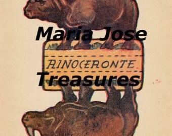Vintage Rhinoceros Paper Model Cut Outs - Digital Download