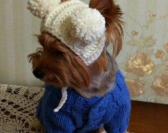 Dog Sunshine Hat Crochet Dog Headband Dog Sun Costume
