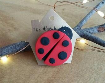 Katybird ladybird