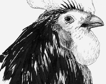 Rooster Pen and Ink Drawing - Limited Edition Print - Kitchen and Home Decor