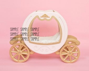 Cinderella Carriage - Pink and Mocha Solid Backdrop - 2 files