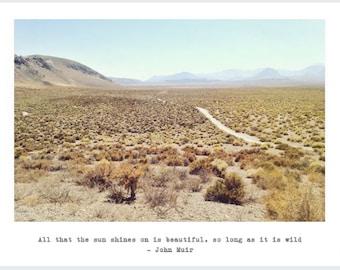 Wild Desert Postcard 4x5.5 in pack of 5