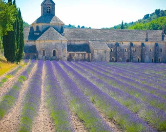 Lavender Field Wall Art, France Photography, Lavender Fields, Provence, Wall Art, Large Wall Art, Abbaye Notre-Dame de Sénanque