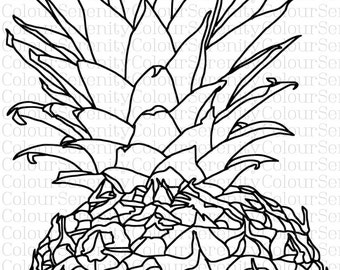 Adult Coloring Page - Pineapple - Printable Instant Download #30