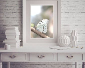 Photograph - Dreamy Monochrome White Butterfly Child Nursery Fine Art Photography Print Wall Art Home Decor