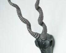 Interior Illusions Antelope Taxidermy Black Finish