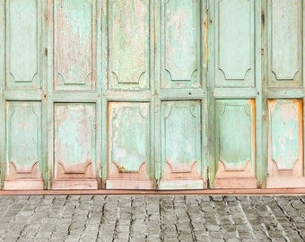Shabby Old Doors Photo Backdrop, Distressed painted wood door photography background, Children Portraits photography photo drops D-9702