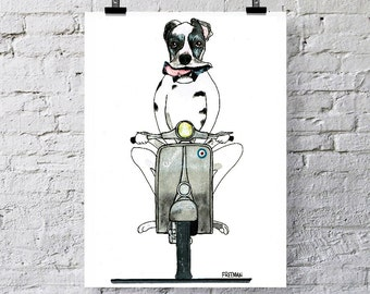 Great Dane riding a Vespa scooter.  Greetings card  /  Art print