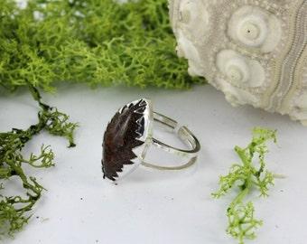 Dinosaure bone ring - Sterling silver ring - Fossil ring -  Handmade