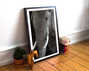 African Elephant Black and White Photography Print, Exotic Wildlife and Zoo Animal Art, Nature Home Decor, Wall Art