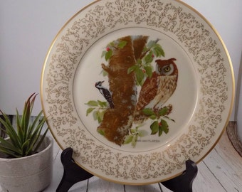 Collectible Owl Plate,Don Whitlatch,Conservationist,Collector plate,nature,Long Eared Owl,Woodpecker,birds,owl figurines,Gorham Fine China