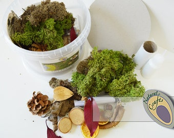 Natural Crafts Fairy Garden Large Kit