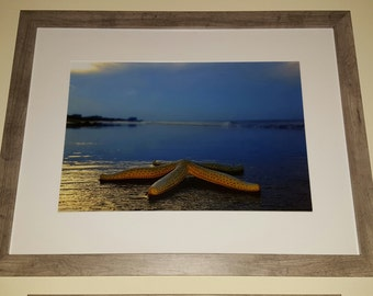 Starfish Beach Days 18×24 framed 12×18