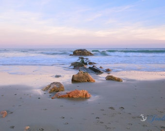Paw Prints in the Sand ~ Scarborough Beach, Narragansett, Rhode Island, New England, Ocean, Coastal, Beach Art, Photograph, Home Decor, Art