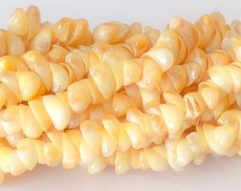 "Natural shell beads, whole shell beads, yellow shells 16"" strand"