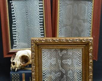 Snake skin framing kit