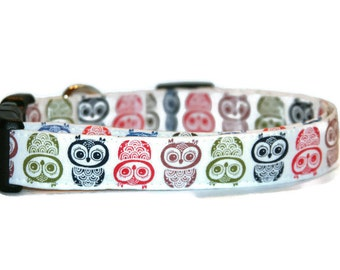 Owl Hoot Dog Collar
