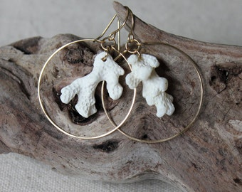 14K Gold-Filled Natural White Coral Hoop Earrings / Hawaiian Jewelry / Coral Earrings / Seashell Earrings / Beach Earrings / Beachy Jewelry