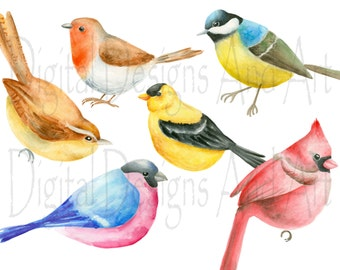 Bird clipart, Watercolor birds clip art, Hand painted birds illustration, Goldfinch illustration, Robin bird clipart, Cardinal clipart