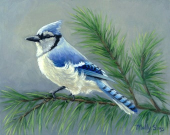 Bluejay - Eastern bluejay - Bird painting - Blue and black bird - Open edition print