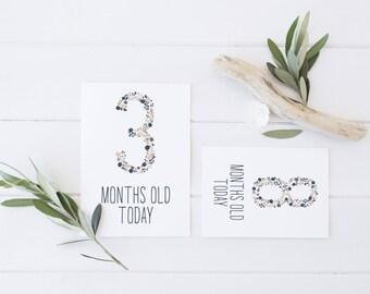 Baby Milestone Cards - Floral Pink & Navy Design - Printable