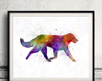 Kuvasz in watercolor 8x10 in. to 12x16 in. Fine Art Print Glicee Poster Decor Home Watercolor Illustration - SKU 1146